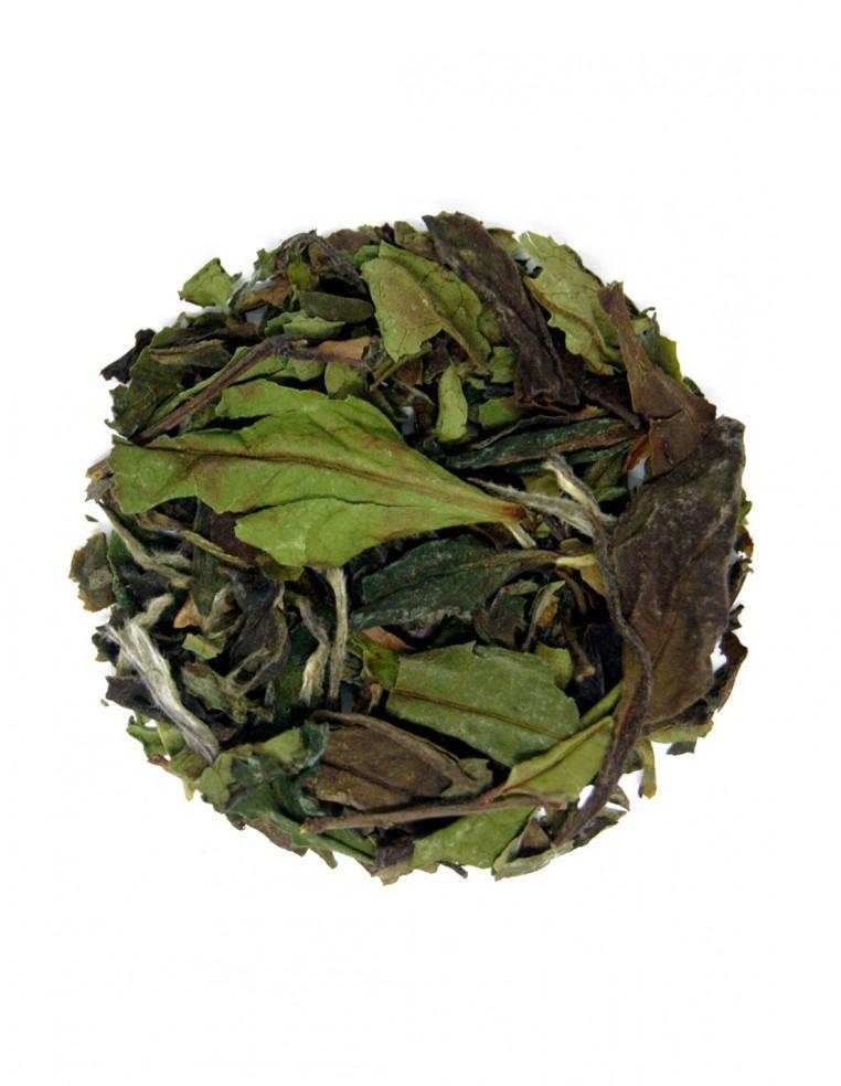 Té blanco Pai Mu Tan orgánico