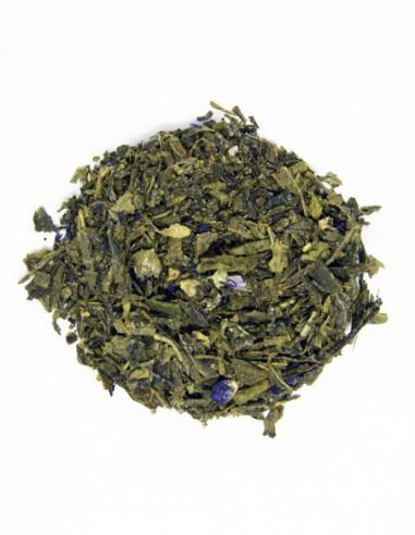 Té verde Sencha Kombucha